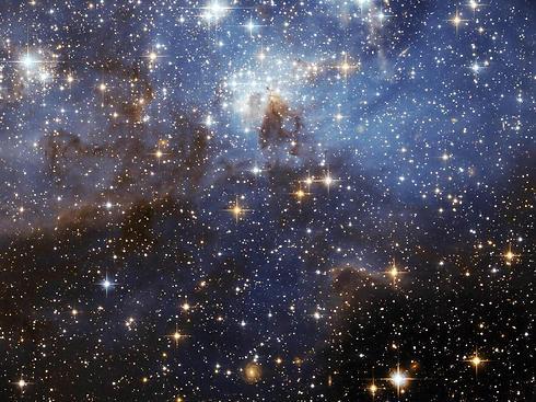 """כוכבים בשמיים (צילום: נאס""""א) (צילום: נאס"""