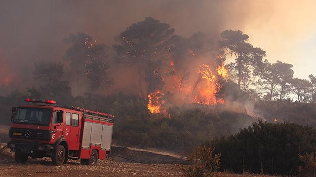 The Carmel fire (Photo: Avishag She'ar Yeshuv)