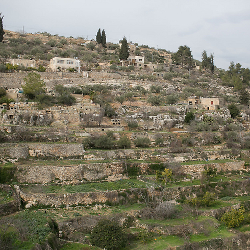 The ancient terraces in Battir (Photo: Ohad Zwigenberg