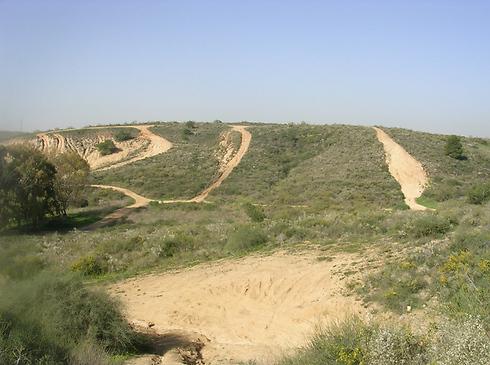 שמורת גבעת האירוסים בנס ציונה. הנוף מקפיץ את ערך הנכס (צילום: החברה להגנת הטבע) (צילום: החברה להגנת הטבע)