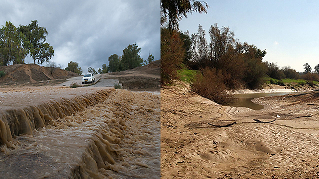 Nahal Habesor (The Besor Stream) 2013 (L) 2014 (R) (Photo: Roee Idan, Eli Betzri)