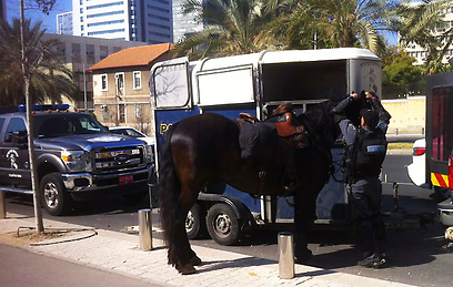 Mounted police at the Interior Ministry demonstration