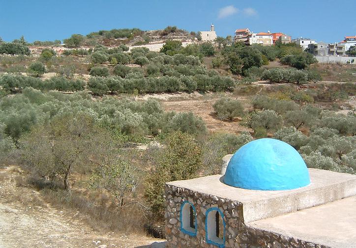 גוש חלב מקבר הנביא יואל בן פתואל (צילום: אמנון גופר)