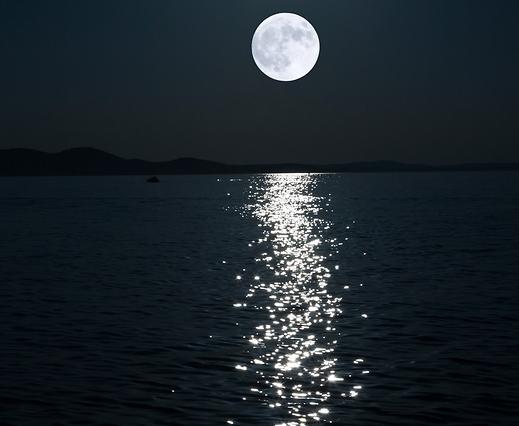 לירי בשבדית. שובל הירח (צילום: shutterstock)