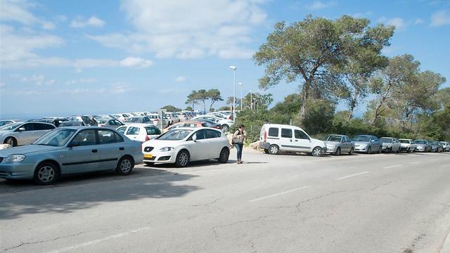 סטודנטים חונים על הכביש הראשי בסמוך לאוניברסיטת חיפה (צילום: יפעת סגל, באדיבות אגודת הסטודנטים) (צילום: יפעת סגל, באדיבות אגודת הסטודנטים)