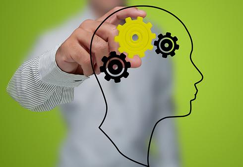 השכחה עוזרת ליצירת תאי עצב חדשים (צילום: shutterstock) (צילום: shutterstock)