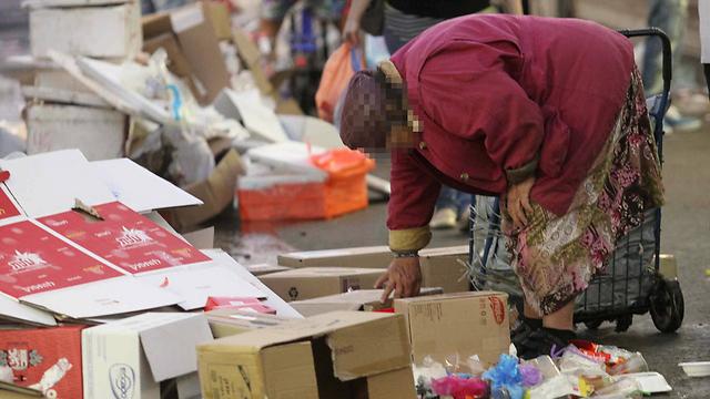 מחפשים מזון על הרצפה בשוק הכרמל (ארכיון) (צילום: עידו ארז) (צילום: עידו ארז)