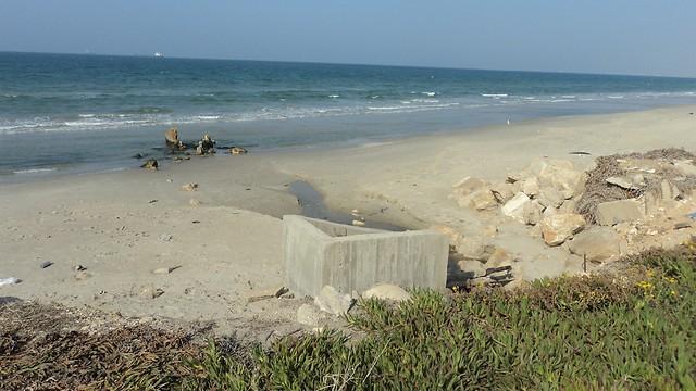 חיפה. המים המזוהמים מגיעים לקו החוף (צילום: ניצן מתן, באדיבות עמותת צלול) (צילום: ניצן מתן, באדיבות עמותת צלול)