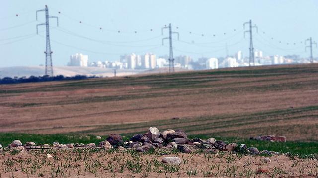 שדה בריר, לא רחוק מערד (צילום: חיים הורנשטיין) (צילום: חיים הורנשטיין)