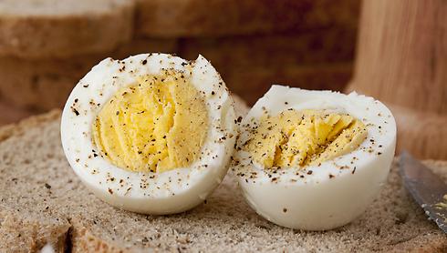 חלמון הביצה עתיר כולסטרול (צילום: Shutterstock) (צילום: Shutterstock)
