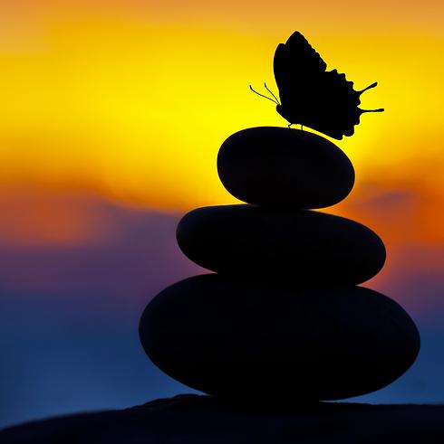 למצוא את החופש ואת המשמעות (צילום: shutterstock) (צילום: shutterstock)