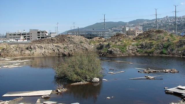 מאגר המים המזוהם (צילום: ניצן מתן, באדיבות עמותת צלול) (צילום: ניצן מתן, באדיבות עמותת צלול)