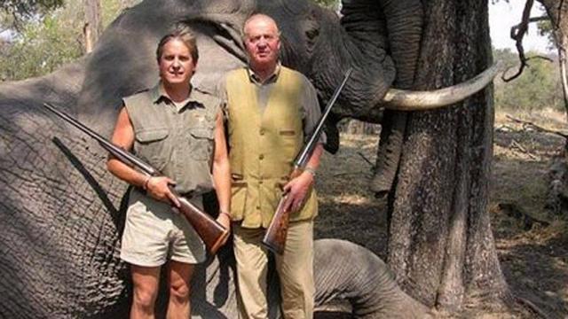 התמונה עם הפיל הסובל שעוררה זעם ()