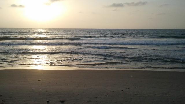 חוף הצוק (צילום: דב גרינבלט)