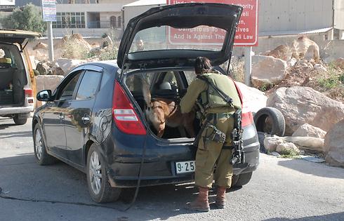 Checking income and outgoing vehicles (Photo: Barel Efraim)