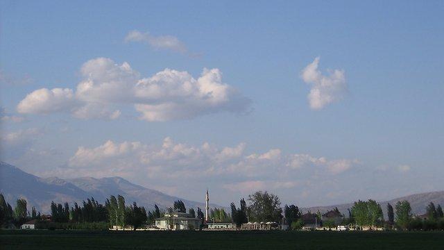 טקקוי (צילום: מידן וישינסקי) (צילום: מידן וישינסקי)