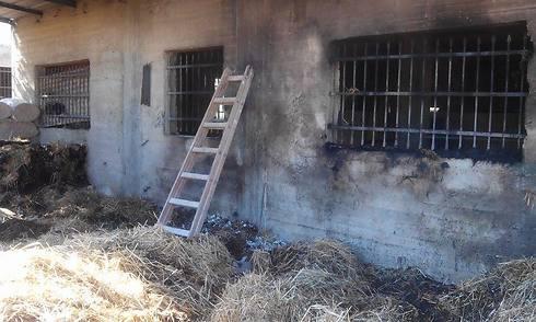 Livestock pen set ablaze