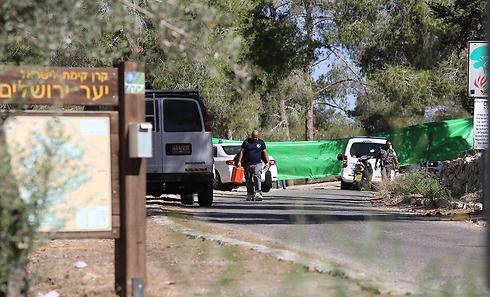 זירת מציאת הגופה הבוקר ביער ירושלים                (צילום: גיל יוחנן) (צילום: גיל יוחנן)