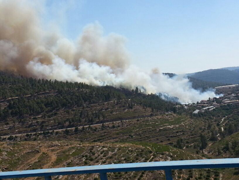 Fire in Even Sapir. (Photo; Moran Zada) (Photo: Moran Zada)