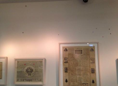 הנזק במוזיאון באשדוד הבוקר             (צילום: שמואל דוד ) (צילום: שמואל דוד )