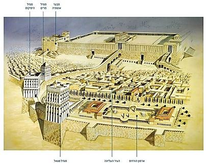 (צילום: מוזיאון מגדל דוד) (צילום: מוזיאון מגדל דוד)