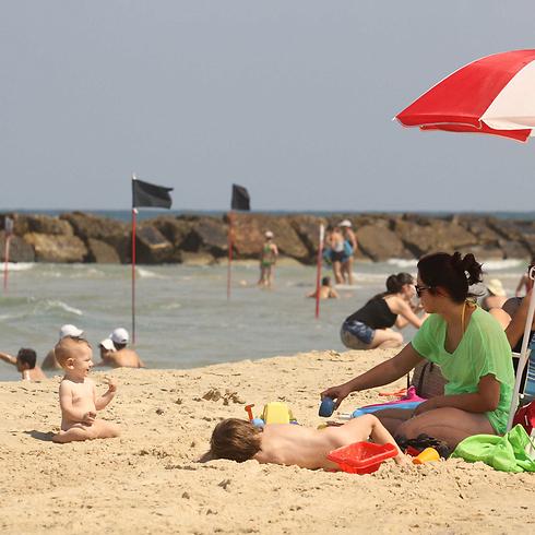 חוף הים באשקלון, הבוקר (צילום: עידו ארז) (צילום: עידו ארז)