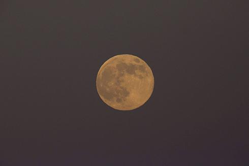 כבר בן 4.45 מיליארד. הירח (צילום: EPA) (צילום: EPA)