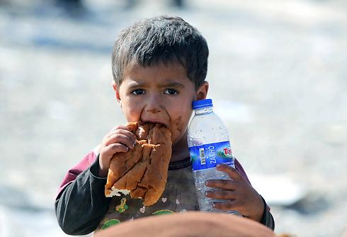 ילד יזידי בדרכו לגבול סוריה מהר סינג'אר (צילום: AFP) (צילום: AFP)
