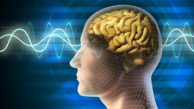 האזנה למוזיקה משפרת את החשיבה המרחבית טמפורלית (צילום: shutterstock) (צילום: shutterstock)