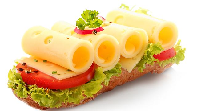 טוסט עם גבינה 9% מכיל כ-120 קלוריות בלבד (צילום: shutterstock) (צילום: shutterstock)