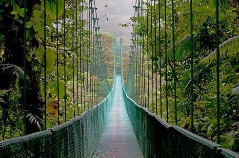 פארק הגשרים התלויים של מונטה ורדה  (צילום: shutterstock) (צילום: shutterstock)