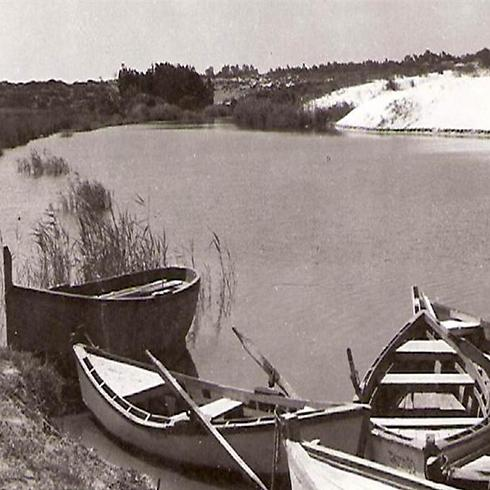 נחל אלכסנדר, שנות ה-60 (צילום: עזריה אלון) (צילום: עזריה אלון)