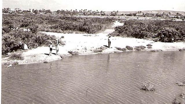 נחל נעמן, שנות ה-60 (צילום: עזריה אלון) (צילום: עזריה אלון)