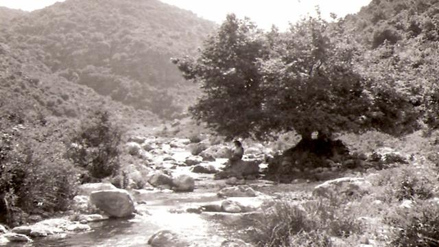 נחל כזיב, שנות ה-60 (צילום: עזריה אלון) (צילום: עזריה אלון)