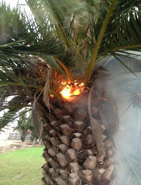 Fire in Safsufa (Photo: David Sharabi)