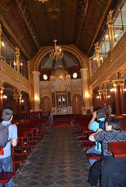 הרב גור אריה: אבטחה איננה נחוצה בקרקוב, משום שאין אנטישמיות  (צילום: אילת שי) (צילום: אילת שי)