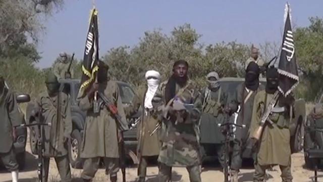 """יש הישגים במלחמה בארגון הטרור בניגריה. """"בוקו חראם"""" (צילום: AP)"""