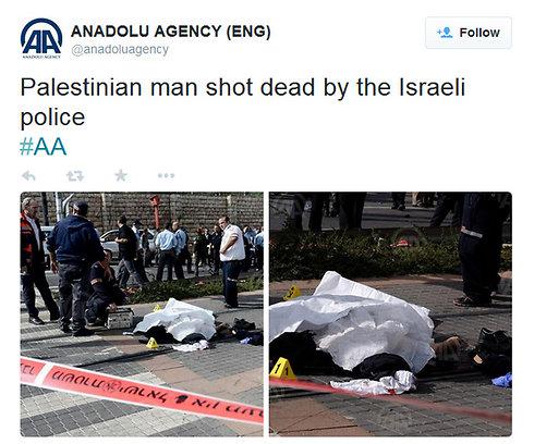 Screenshot of Anadolu Agency tweet