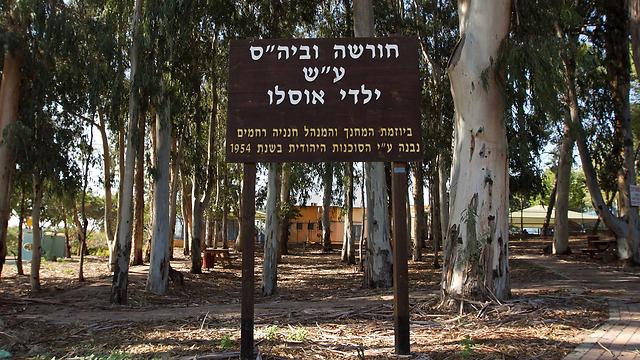 החורשה לזכר האסון ביישוב ינוב שבו גר יצחק אלאל (צילום: עידו ארז) (צילום: עידו ארז)