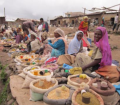 """""""הידע נעלם איתם, כי לא מכשירים את הדור הבא. מרפאים, כמו גם קייסים, זה נושא רגיש"""". שוק תרופות אתיופי   (צילום: באדיבות דקלה דנינו) (צילום: באדיבות דקלה דנינו)"""