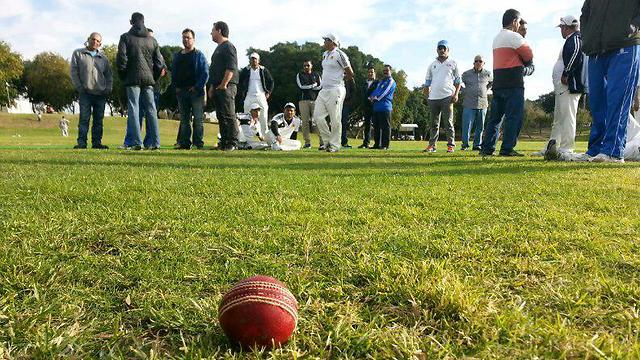 The ball that hit and killed a cricket umpire in Ashdod. (Photo: Ofer Ashtoker) (Photo: Ofer Ashtoker)