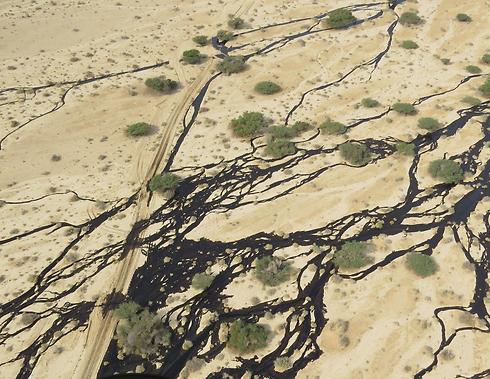 הזיהום הכבד בדצמבר 2014 (צילום: המשרד להגנת הסביבה) (צילום: המשרד להגנת הסביבה)