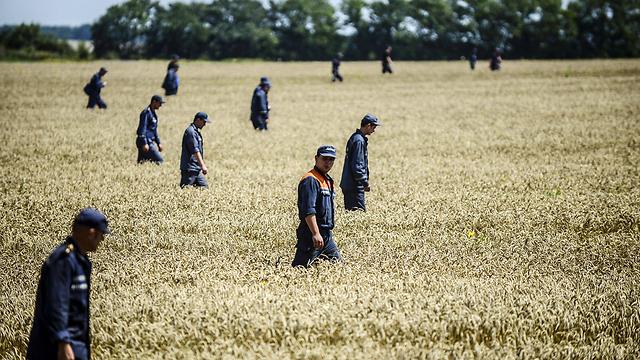 חיילים מצבא אוקראינה מחפשים גופות בשדה שבו התרסק מטוס מלזיה איירליינס. צילום: בולנט קיליץ' (צילום: AFP) (צילום: AFP)
