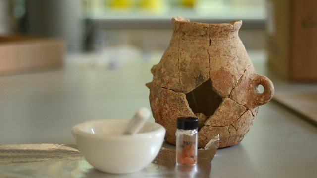The jug found in Ein Zippori provides further evidence of ancient use of olive oil. (Photo: Israel Antiquities Authority)