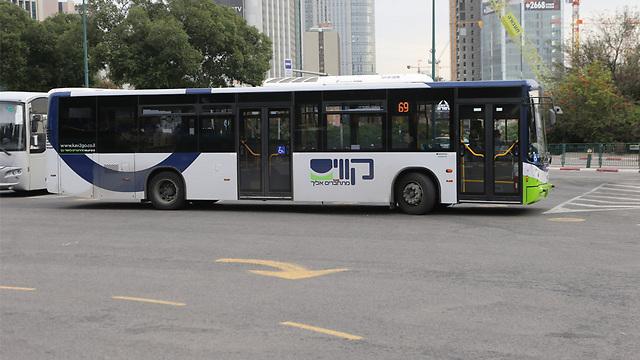 """אוטובוס של """"קווים"""", אילוסטרציה (צילום: מוטי קמחי) (צילום: מוטי קמחי)"""