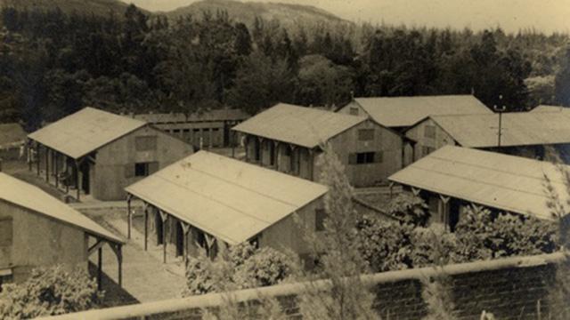 (צילום: מוזיאון בית לוחמי הגטאות ) (צילום: מוזיאון בית לוחמי הגטאות )