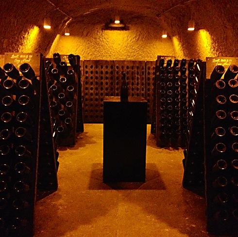 עדיין תוססות אחרי 100 שנה. חדר השמפניות שמשו מהספינה הטבועה בים הבלטי (צילום: רועי ירושלמי) (צילום: רועי ירושלמי)