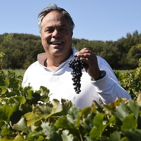 French Jew Alexandre Sartene. Apart from Parnassah, there are only two 100 percent kosher vineyards worldwide outside Israel. (Photo: AFP) (Photo: AFP)