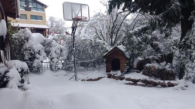 """השלג שצבע את נווה אטי""""ב (צילום: אלעד מנחם) (צילום: אלעד מנחם)"""