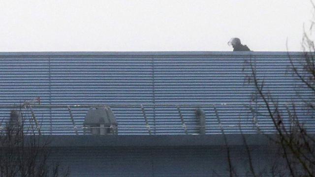 חבר יחידת העלית המשטרתית על גג בית הדפוס (צילום: AFP) (צילום: AFP)